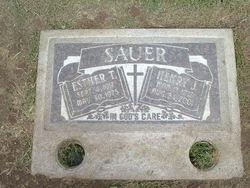 Henry Hank Sauer