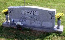 Brian Lee Davis