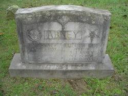 Reuben J Abney
