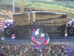Luster J Chasteen