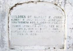 Albert N Jumel