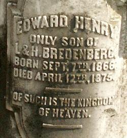 Edward Henry Bredenberg