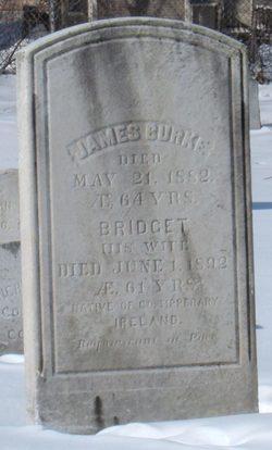 Bridget Burke