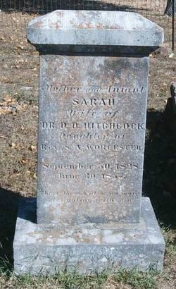 Sarah <i>Worcester</i> Hitchcock