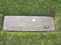 Terry W Wilson