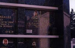 Pedrito Rico