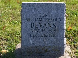 William Harold Bevans