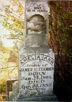 Amelia Ann <i>Conn</i> Alexander