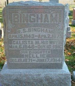 Roger S. Bingham