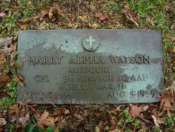 Harry Alpha Watson