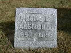 Nellie M. Alenduff