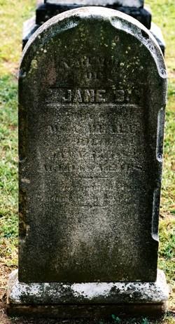 Jane Briggs <i>Howison</i> Beale