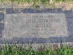 Jon Norman Wolfe