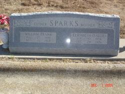 Elizabeth 'Sallie' <i>Kelsy</i> Sparks