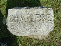 Charles E. Knickerbocker