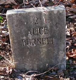 Alice Burnett