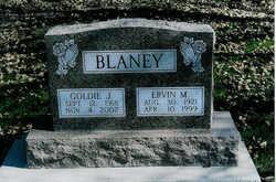 Goldie Jane <i>Robertson</i> Blaney