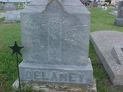Daniel D Delaney