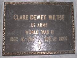 Clare Dewey Wiltse