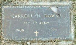 Carroll N. Downs