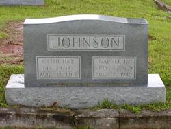 Catherine <i>Owens</i> Johnson