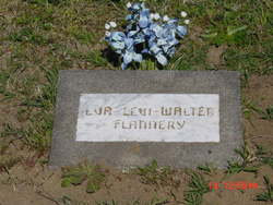 Eva Levi <i>Walter</i> Flannery