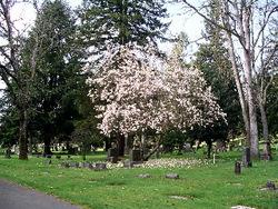 Tacoma Cemetery