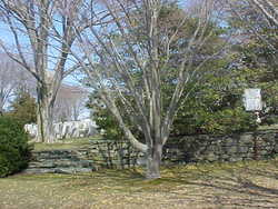 Old Commons Burial Ground