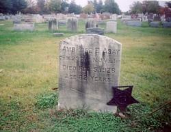 Pvt Ambrose E. Asay