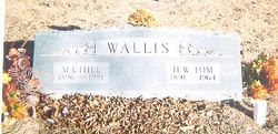 M. Ethel <i>Nichols</i> Wallis