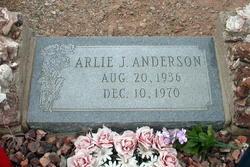 Arlie J. Anderson