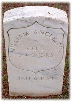 William Anglestin