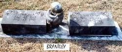 William M. Will Brantley