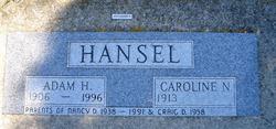 Adam Ike Henry Hansel