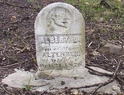 Albert D. Altenber