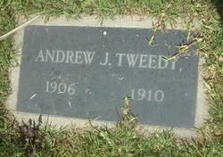 Andrew Jackson Tweedy