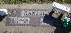 Harold David Hansel