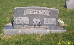 Jesse Noble Hawkins