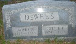 James Fenton Dewees