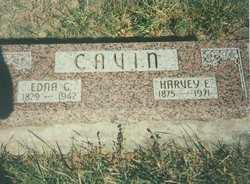 Harvey E. Cavin