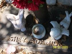 Micah Sheyne Adamick