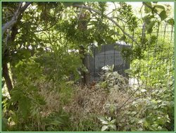 Watonga Indian Cemetery