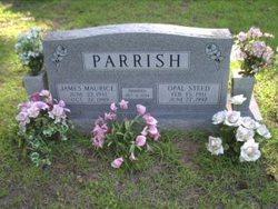 James Maurice Parrish