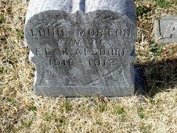 Louis Morton Alsdorf
