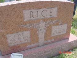 Gordon P. Rice