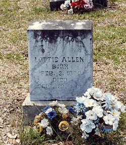 Lottie Allen