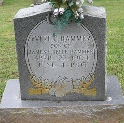 Evert C Hammer