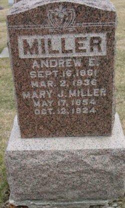 Andrew E Miller