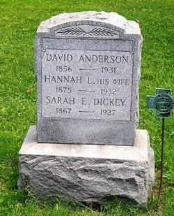 David Anderson, II