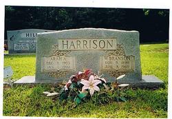 William Branson Harrison